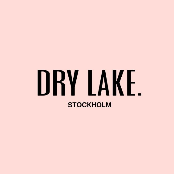 Dry Lake logotype